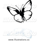 Royalty Free Stock Illustration of a Black and White Butterfly and Reflection by Dero