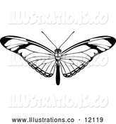 Royalty Free Stock Illustration of a Black and White Butterfly by AtStockIllustration