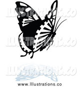Royalty Free Stock Illustration of a Black and White Butterfly Logo with a Reflection Below by Dero