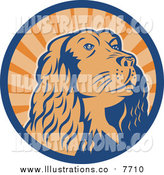 Royalty Free Stock Illustration of a Cocker Spaniel Dog in a Blue and Orange Ray Circle by Patrimonio