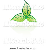 Royalty Free Stock Illustration of Green Leaves Floating by Cidepix