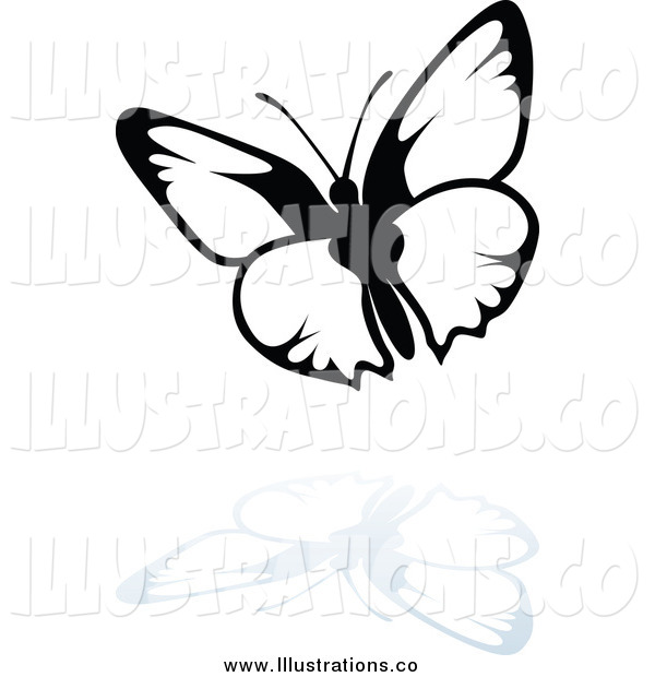 Royalty Free Stock Illustration of a Black and White Butterfly and Reflection