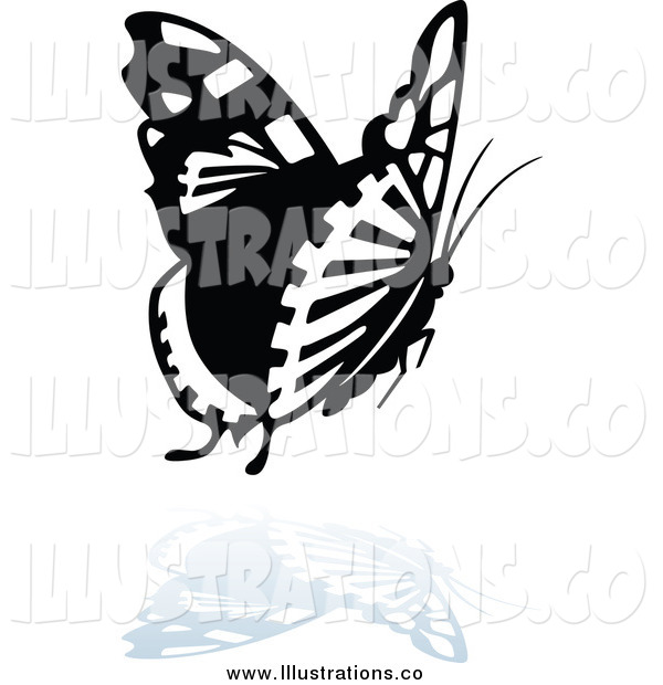 Royalty Free Stock Illustration of a Black and White Butterfly Logo with a Reflection Below