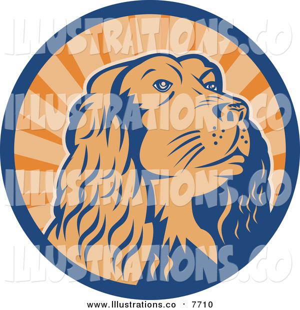 Royalty Free Stock Illustration of a Cocker Spaniel Dog in a Blue and Orange Ray Circle