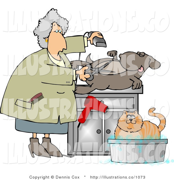 Royalty Free Stock Illustration of a Female Pet Groomer Cutting and Trimming a Dog's Belly Hair
